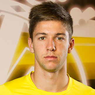 Luciano Vietto earned a  million dollar salary, leaving the net worth at 10 million in 2017